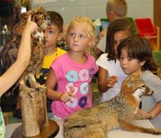 Students looking at animals