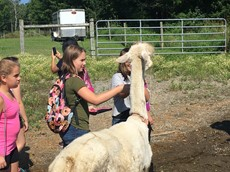 Children with an alpaca