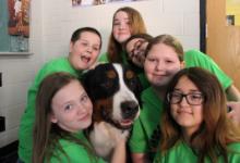Six children hug a saint bernard dog