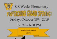 Playground grand opening flier